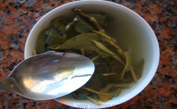 蜂蜜养生保健食谱—— 鱼腥草蜂蜜饮。鲜鱼腥草100克,蜂蜜30克——第六味道